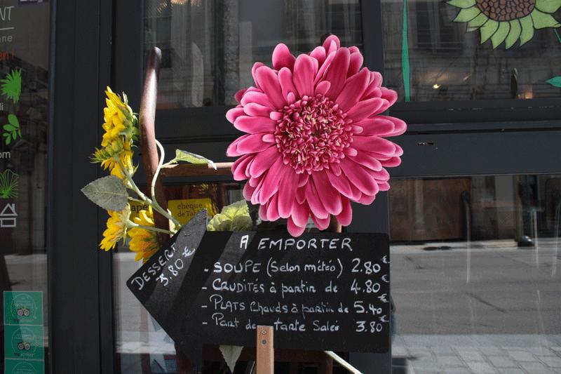 Photo d'une fleur en décoration de la vitrine de Basilic Instant.